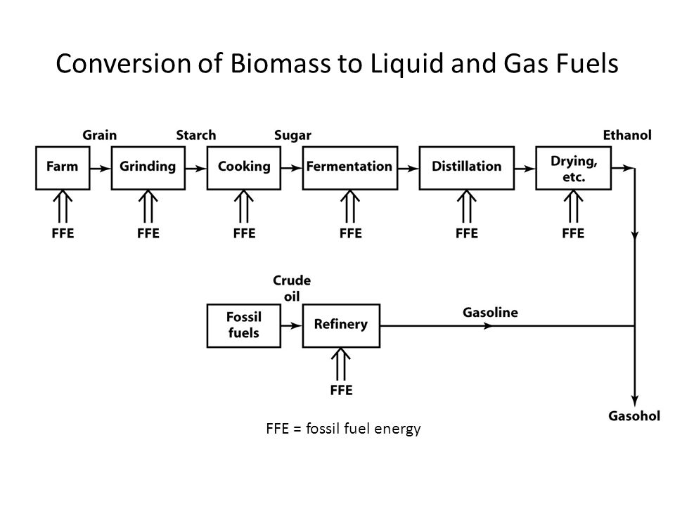Conversion of Biomass to Liquid and Gas Fuels FFE = fossil fuel energy
