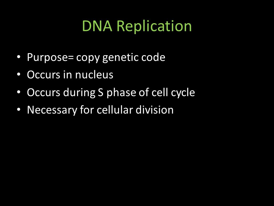 DNA Replication Purpose= copy genetic code Occurs in nucleus Occurs during S phase of cell cycle Necessary for cellular division