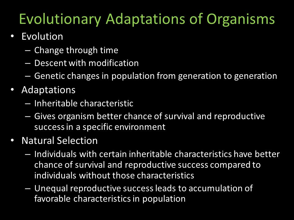 Evolutionary Adaptations of Organisms Evolution – Change through time – Descent with modification – Genetic changes in population from generation to generation Adaptations – Inheritable characteristic – Gives organism better chance of survival and reproductive success in a specific environment Natural Selection – Individuals with certain inheritable characteristics have better chance of survival and reproductive success compared to individuals without those characteristics – Unequal reproductive success leads to accumulation of favorable characteristics in population
