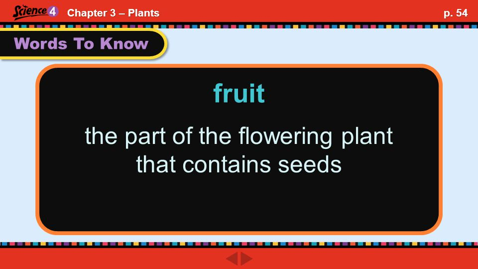 Words To Know the part of the flowering plant that contains seeds fruit Chapter 3 – Plants p. 54