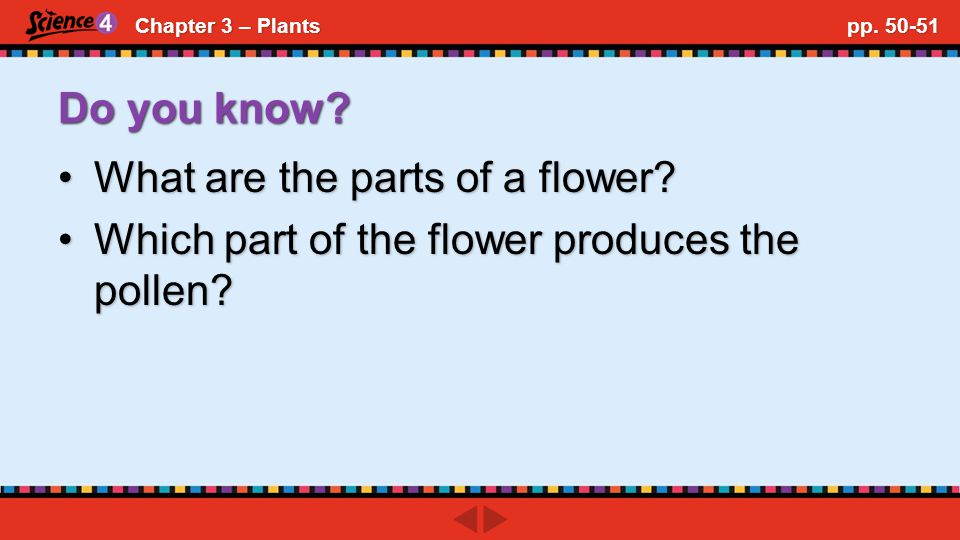 Chapter 3 – Plants pp.54-55 Do you know. What is a fruit?What is a fruit.