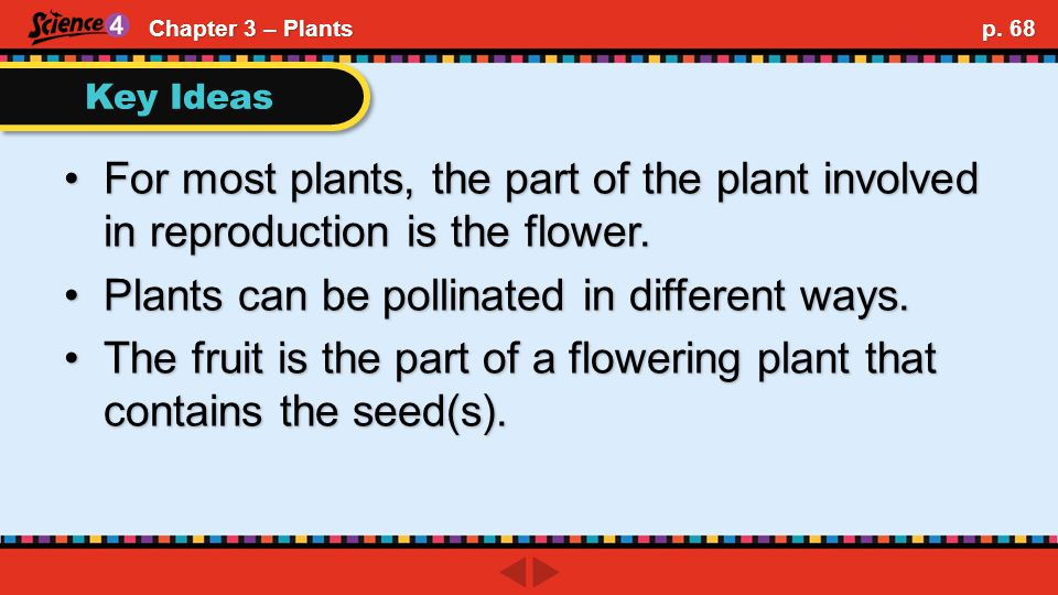 Key Ideas For most plants, the part of the plant involved in reproduction is the flower.For most plants, the part of the plant involved in reproduction is the flower.