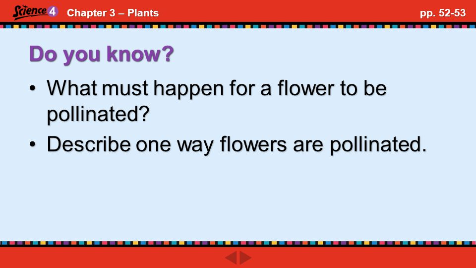 Chapter 3 – Plants pp. 52-53 Do you know.