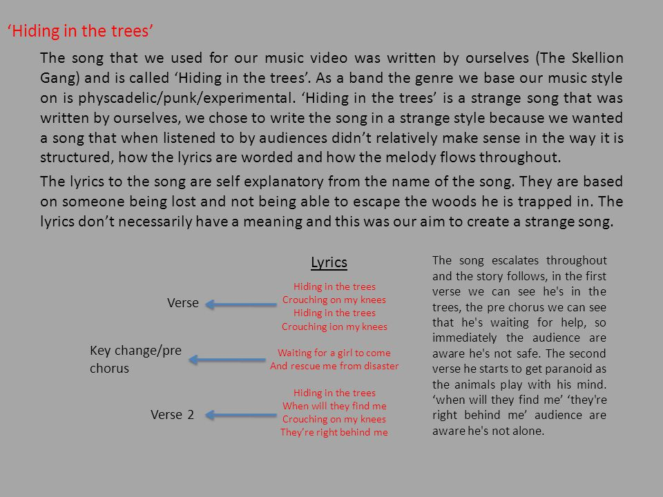 'Hiding in the trees' The song that we used for our music video was written by ourselves (The Skellion Gang) and is called 'Hiding in the trees'.