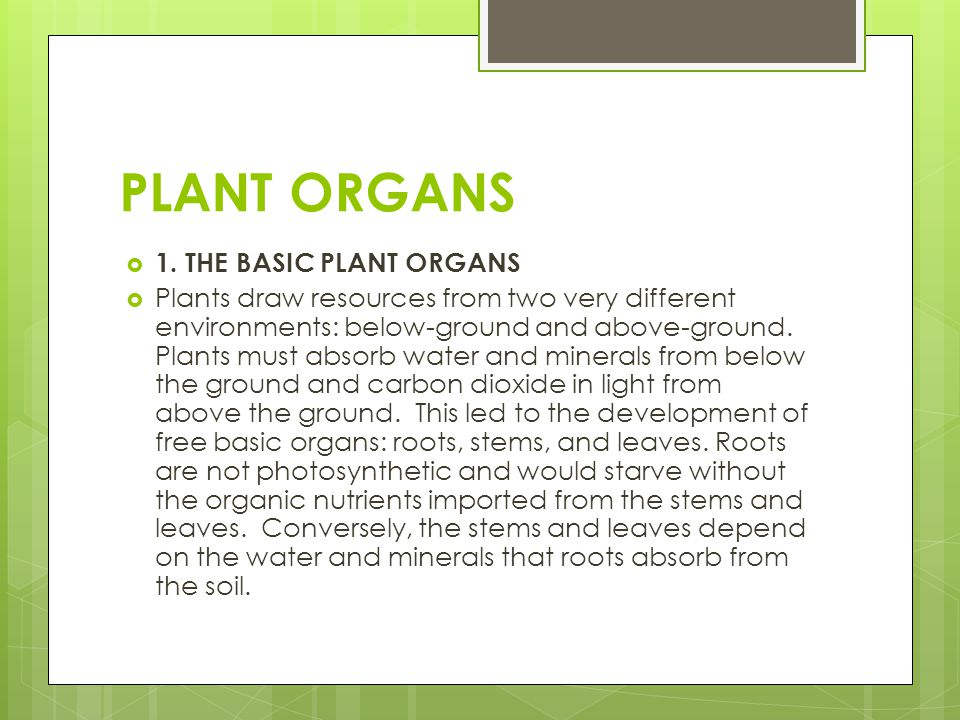 PLANT ORGANS  1. THE BASIC PLANT ORGANS  Plants draw resources from two very different environments: below-ground and above-ground. Plants must abso