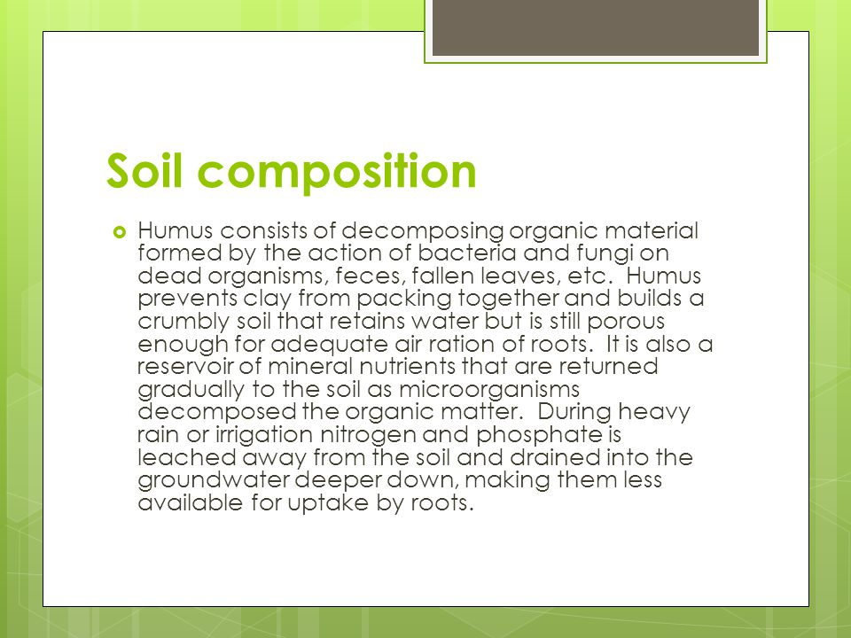 Soil composition  Humus consists of decomposing organic material formed by the action of bacteria and fungi on dead organisms, feces, fallen leaves,