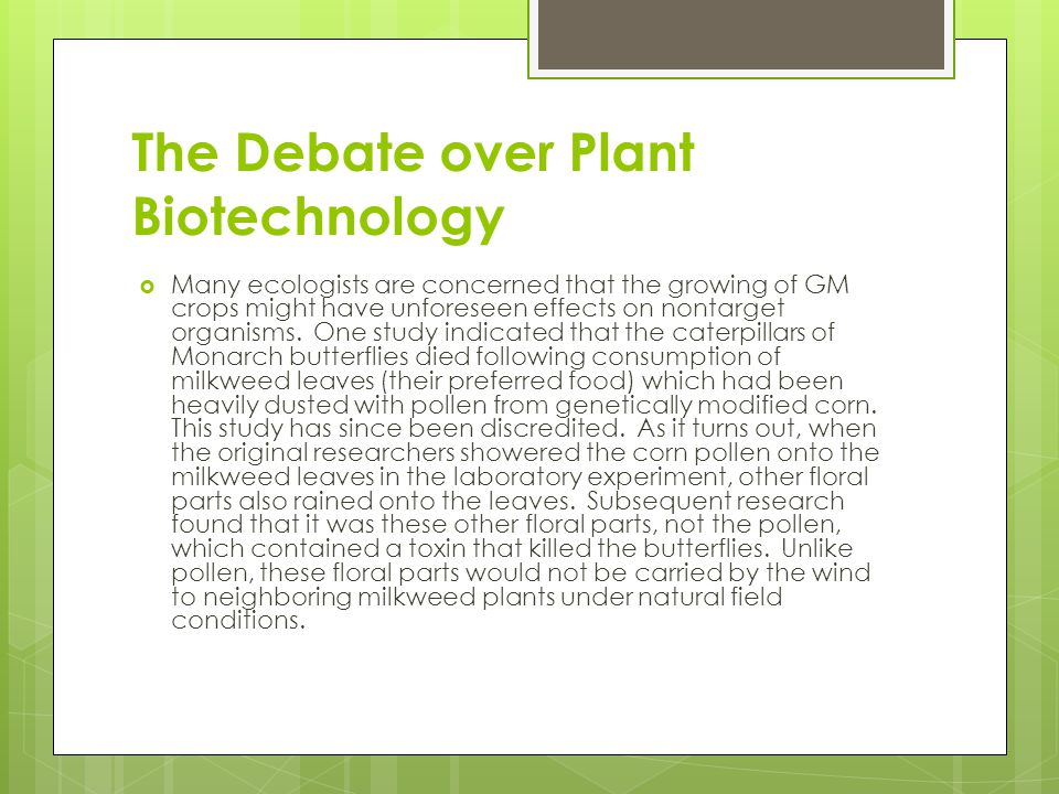 The Debate over Plant Biotechnology  Many ecologists are concerned that the growing of GM crops might have unforeseen effects on nontarget organisms.