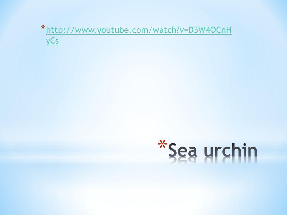 * http://www.youtube.com/watch v=D3W4OCnH yCs http://www.youtube.com/watch v=D3W4OCnH yCs