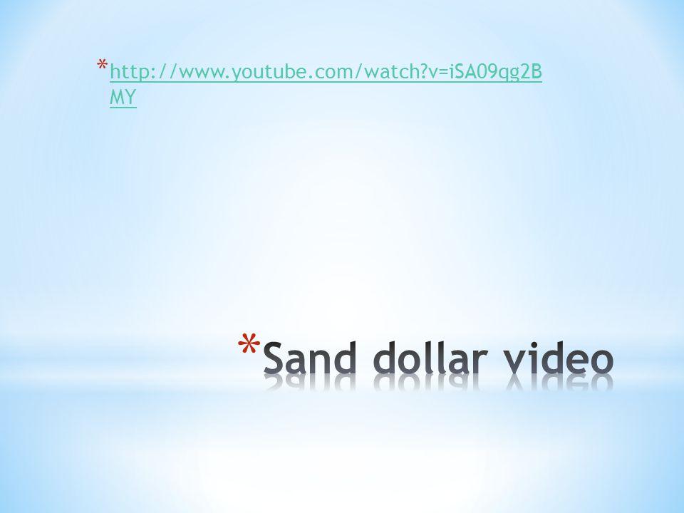* http://www.youtube.com/watch v=iSA09qg2B MY http://www.youtube.com/watch v=iSA09qg2B MY
