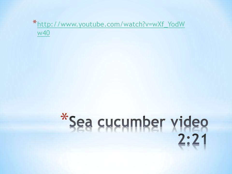 * http://www.youtube.com/watch v=wXf_YodW w40 http://www.youtube.com/watch v=wXf_YodW w40