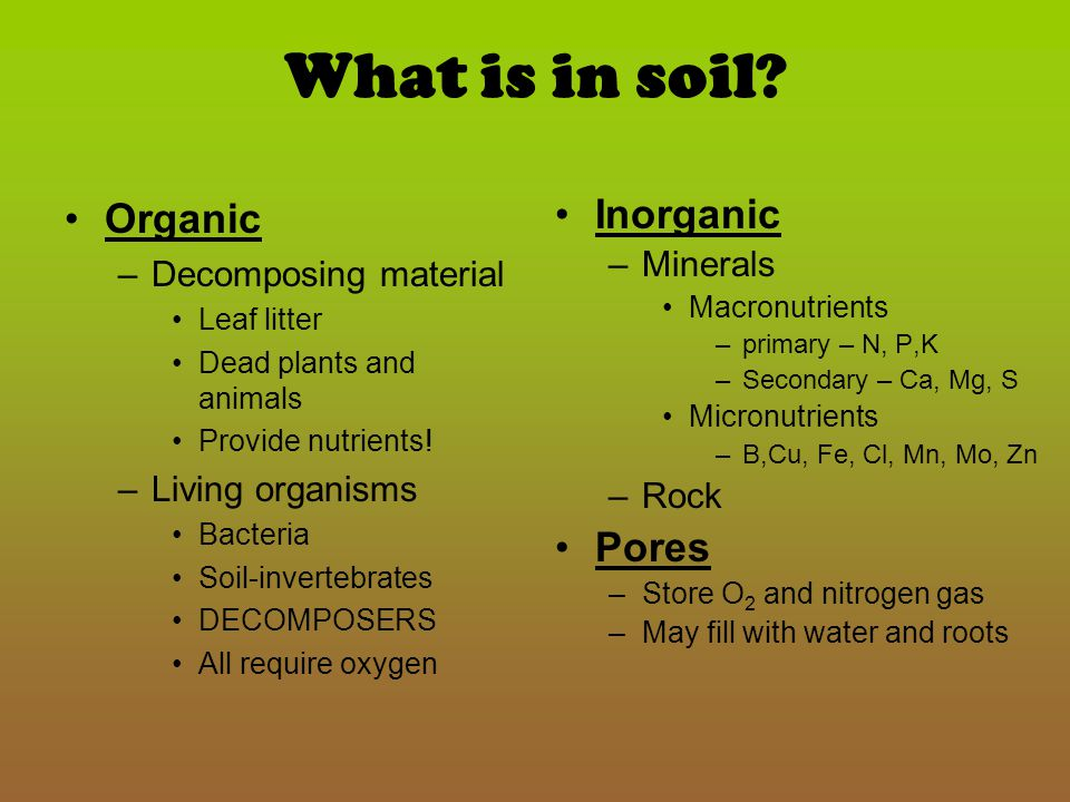 Soil Texture Textures –Sand - biggest particles (0.05 – 2.00mm) –Silt – (.002-.05mm) –Clay – smallest components (less than.002mm) Determined by the % of each type of particle –Gritty = sand –Smooth = silt –Sticky = clay