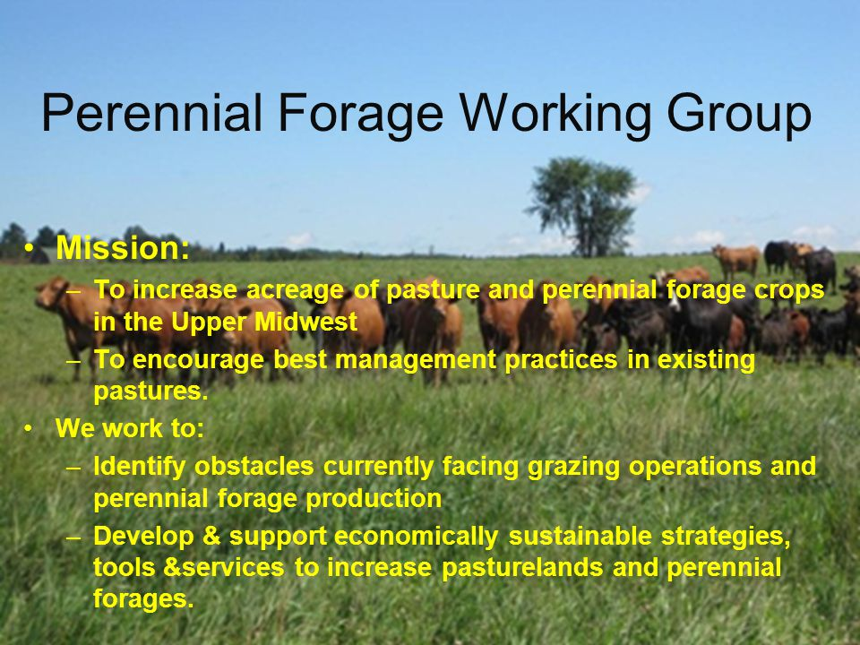 Perennial Forage Working Group Mission: –To increase acreage of pasture and perennial forage crops in the Upper Midwest –To encourage best management