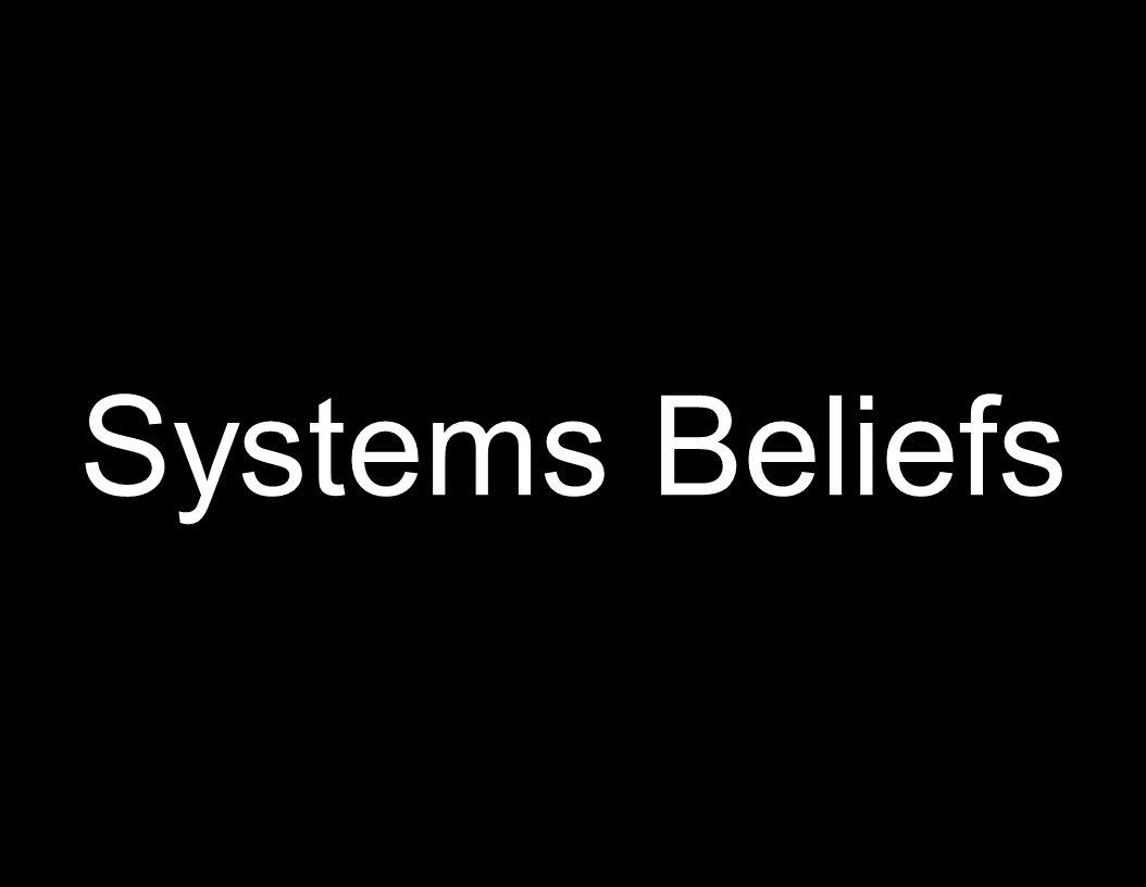 14 Systems Beliefs