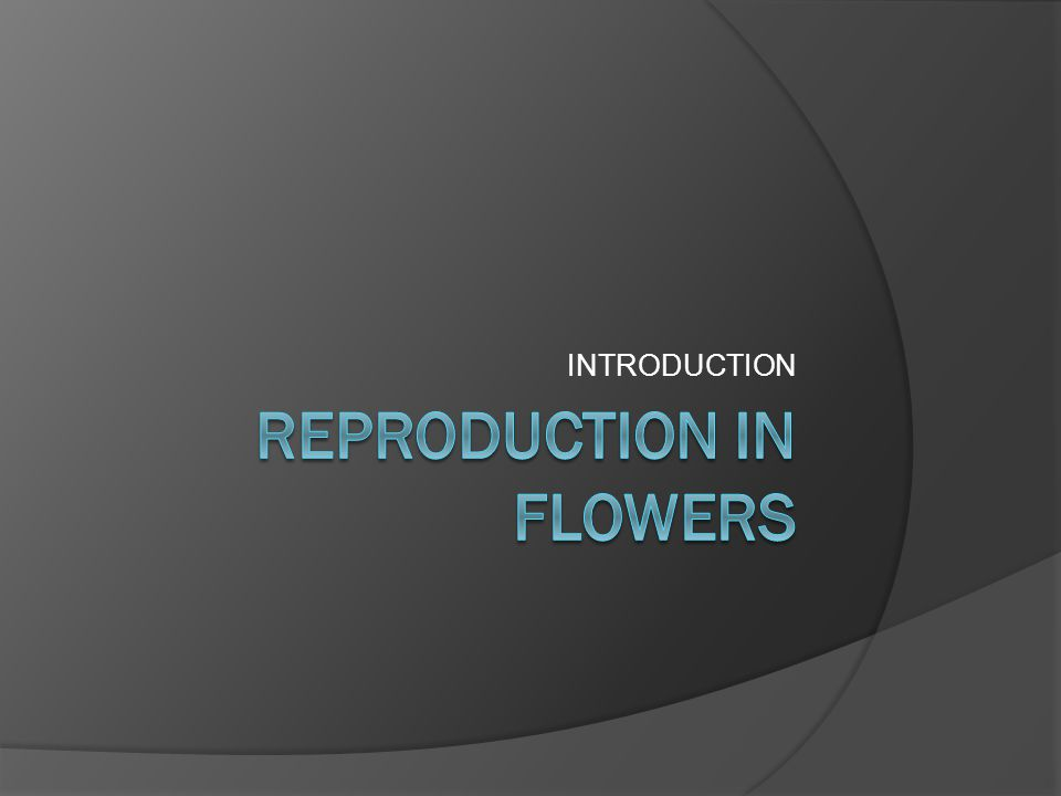 WARM UP  Write the mind map about plants reproduction