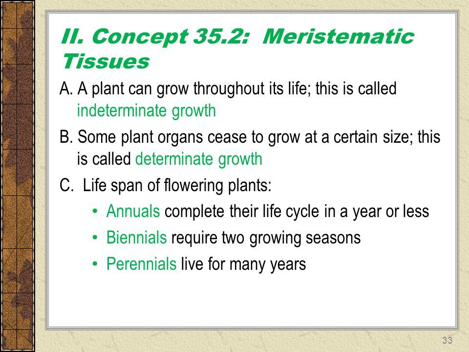 II. Concept 35.2: Meristematic Tissues A. A plant can grow throughout its life; this is called indeterminate growth B. Some plant organs cease to grow