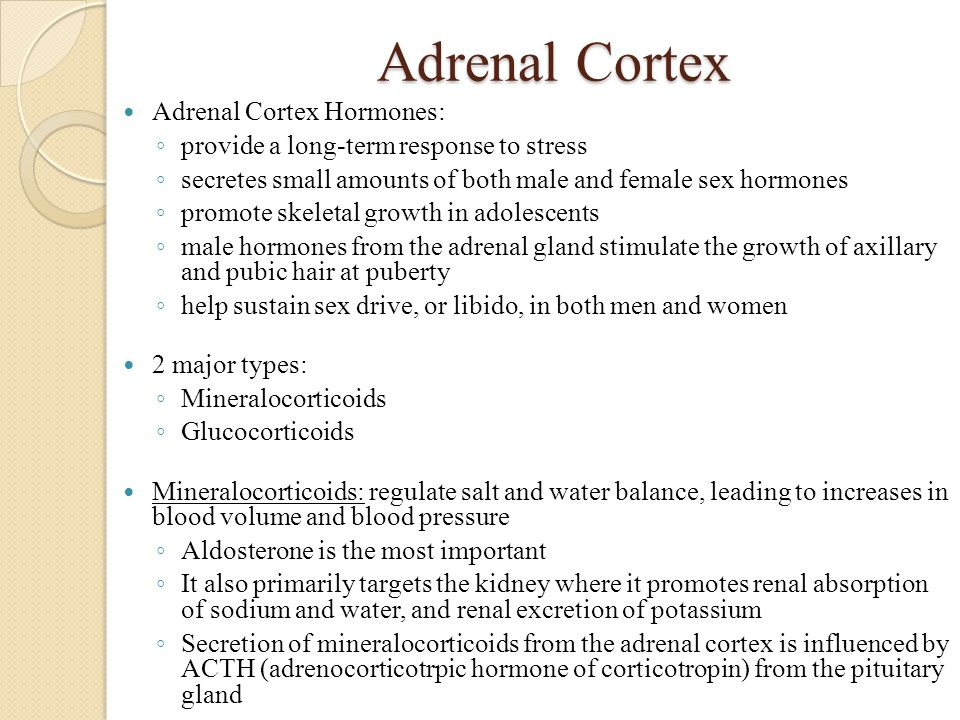 Adrenal Cortex Adrenal Cortex Hormones: ◦ provide a long-term response to stress ◦ secretes small amounts of both male and female sex hormones ◦ promo