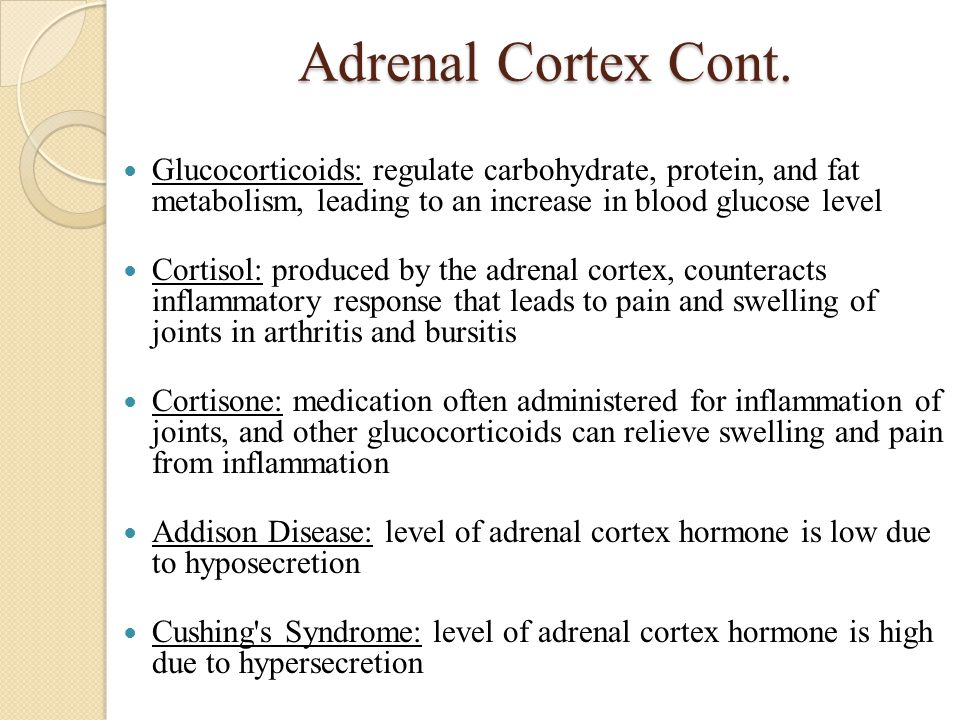 Adrenal Cortex Cont. Glucocorticoids: regulate carbohydrate, protein, and fat metabolism, leading to an increase in blood glucose level Cortisol: prod