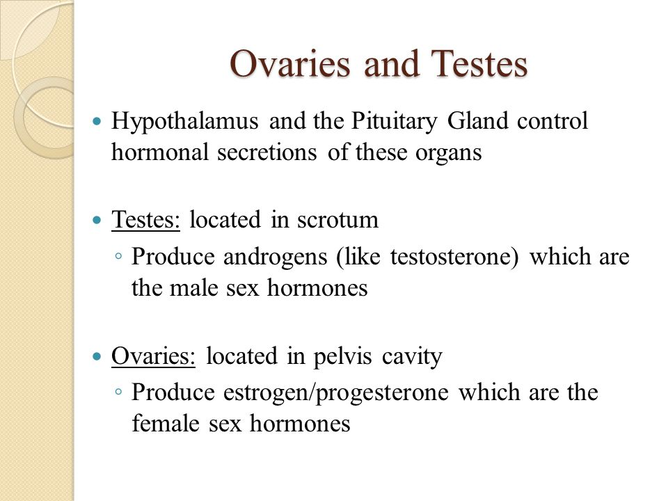 Ovaries and Testes Hypothalamus and the Pituitary Gland control hormonal secretions of these organs Testes: located in scrotum ◦ Produce androgens (li