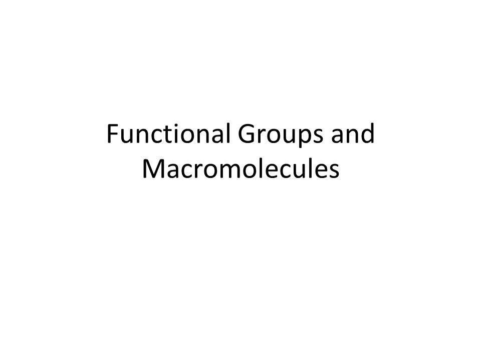 Functional Groups and Macromolecules