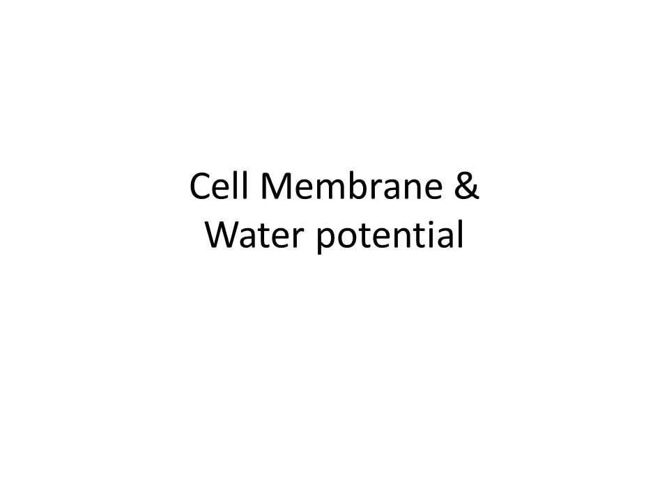 Cell Membrane & Water potential