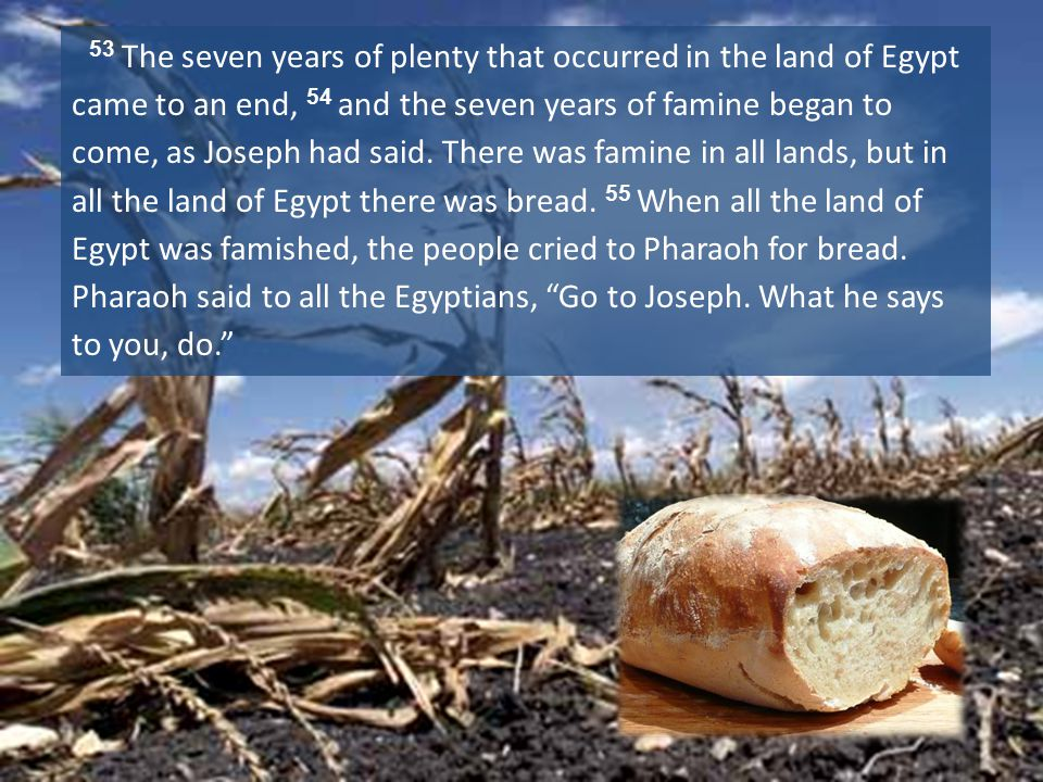53 The seven years of plenty that occurred in the land of Egypt came to an end, 54 and the seven years of famine began to come, as Joseph had said.