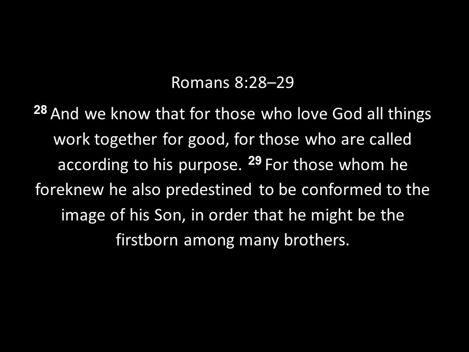 Romans 8:28–29 28 And we know that for those who love God all things work together for good, for those who are called according to his purpose.