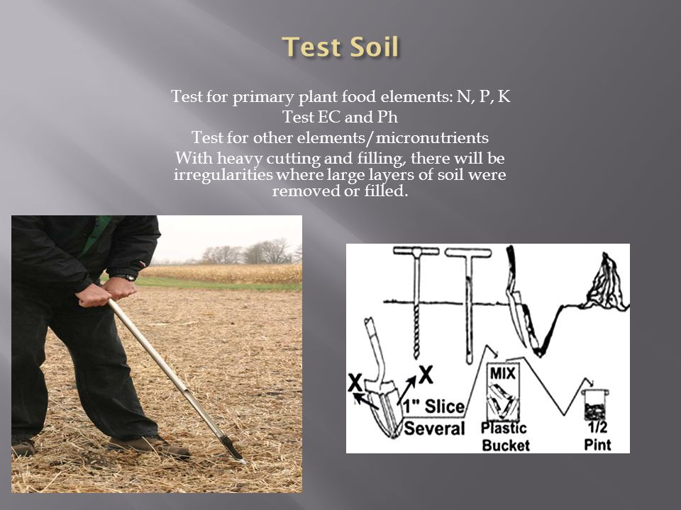 Test for primary plant food elements: N, P, K Test EC and Ph Test for other elements/micronutrients With heavy cutting and filling, there will be irregularities where large layers of soil were removed or filled.