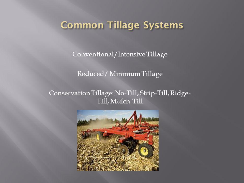 Conventional/Intensive Tillage Reduced/ Minimum Tillage Conservation Tillage: No-Till, Strip-Till, Ridge- Till, Mulch-Till