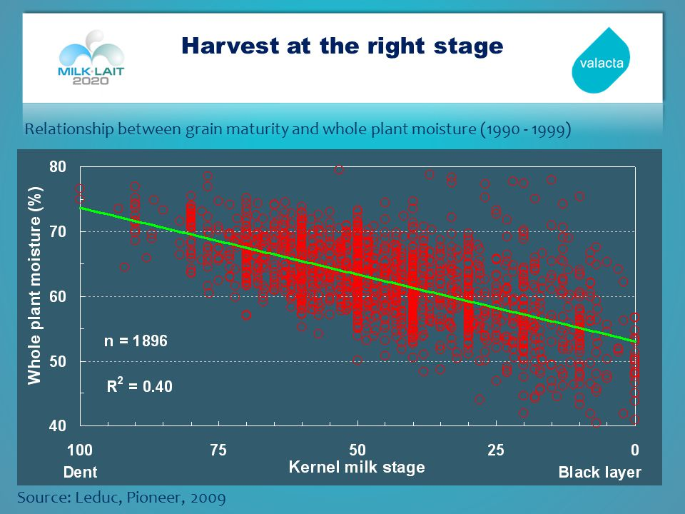 Harvest at the right stage Source: Leduc, Pioneer, 2009 Relationship between grain maturity and whole plant moisture (1990 - 1999)