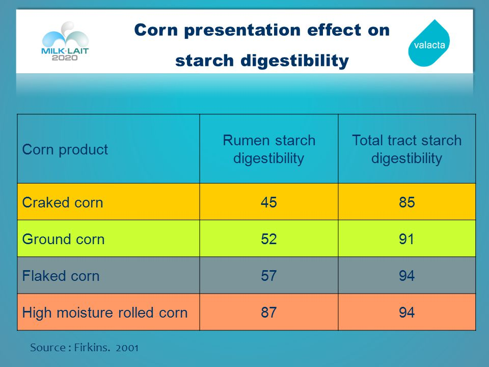 Corn presentation effect on starch digestibility Source : Firkins.