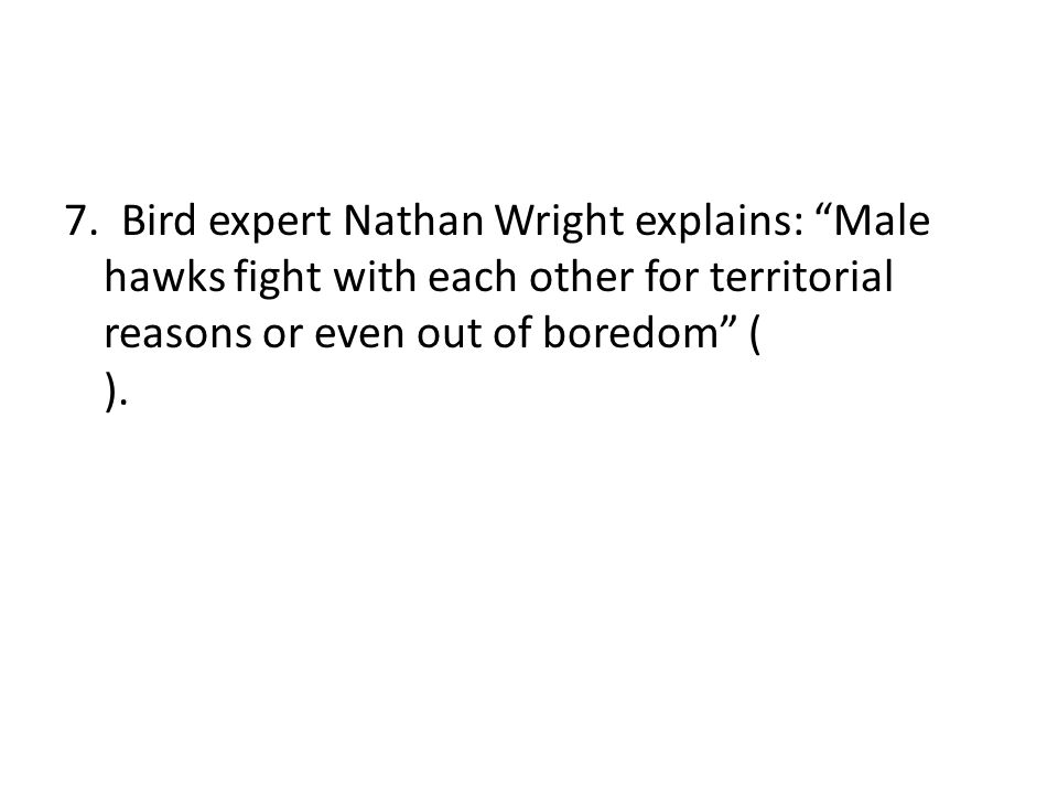 """7. Bird expert Nathan Wright explains: """"Male hawks fight with each other for territorial reasons or even out of boredom"""" ( )."""