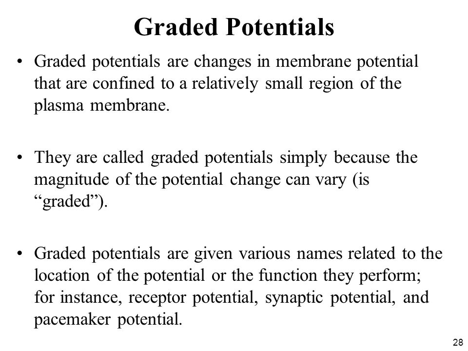 28 Graded Potentials Graded potentials are changes in membrane potential that are confined to a relatively small region of the plasma membrane.