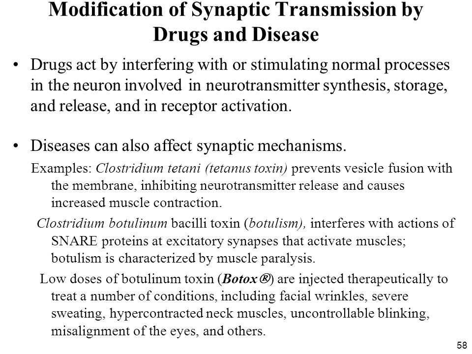 58 Modification of Synaptic Transmission by Drugs and Disease Drugs act by interfering with or stimulating normal processes in the neuron involved in neurotransmitter synthesis, storage, and release, and in receptor activation.