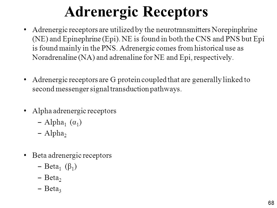 68 Adrenergic Receptors Adrenergic receptors are utilized by the neurotransmitters Norepinphrine (NE) and Epinephrine (Epi).