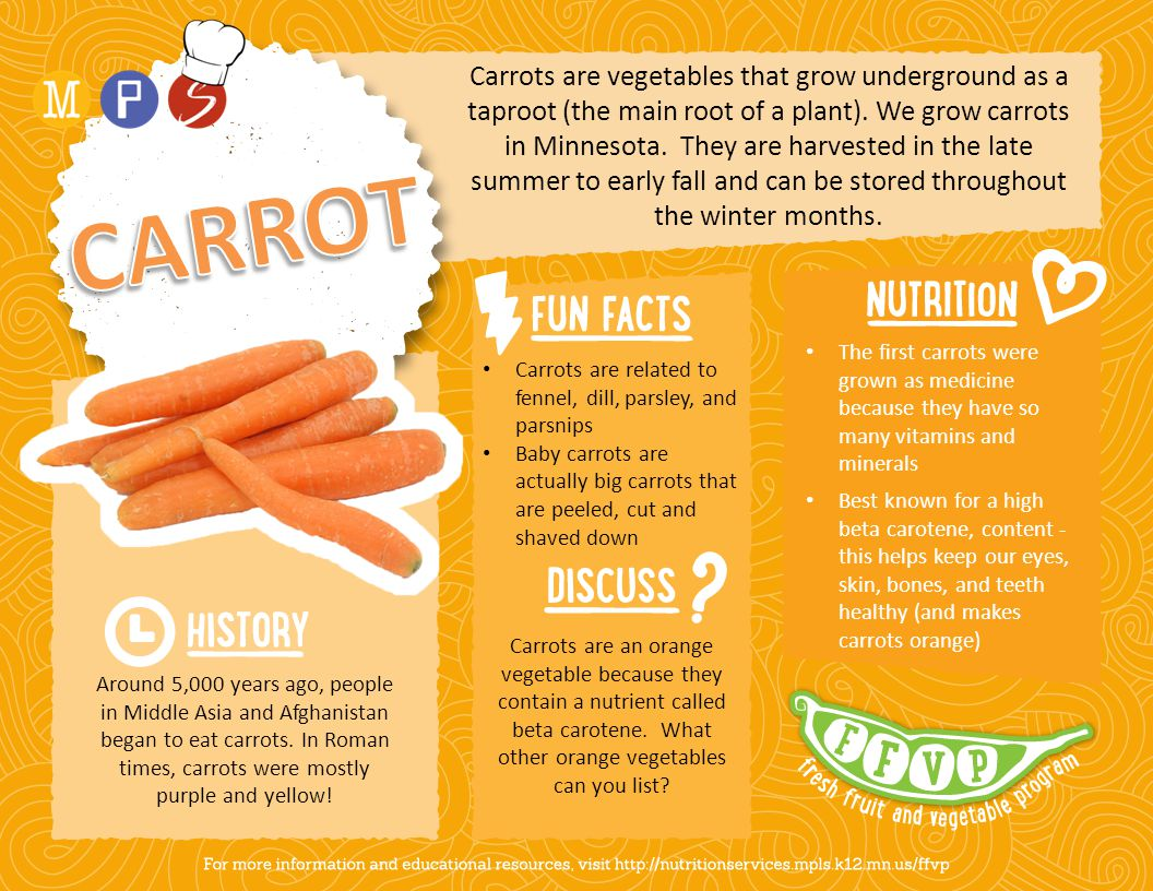 Carrots are vegetables that grow underground as a taproot (the main root of a plant).