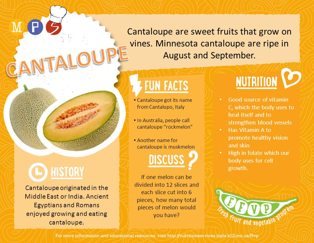 Cantaloupe are sweet fruits that grow on vines.