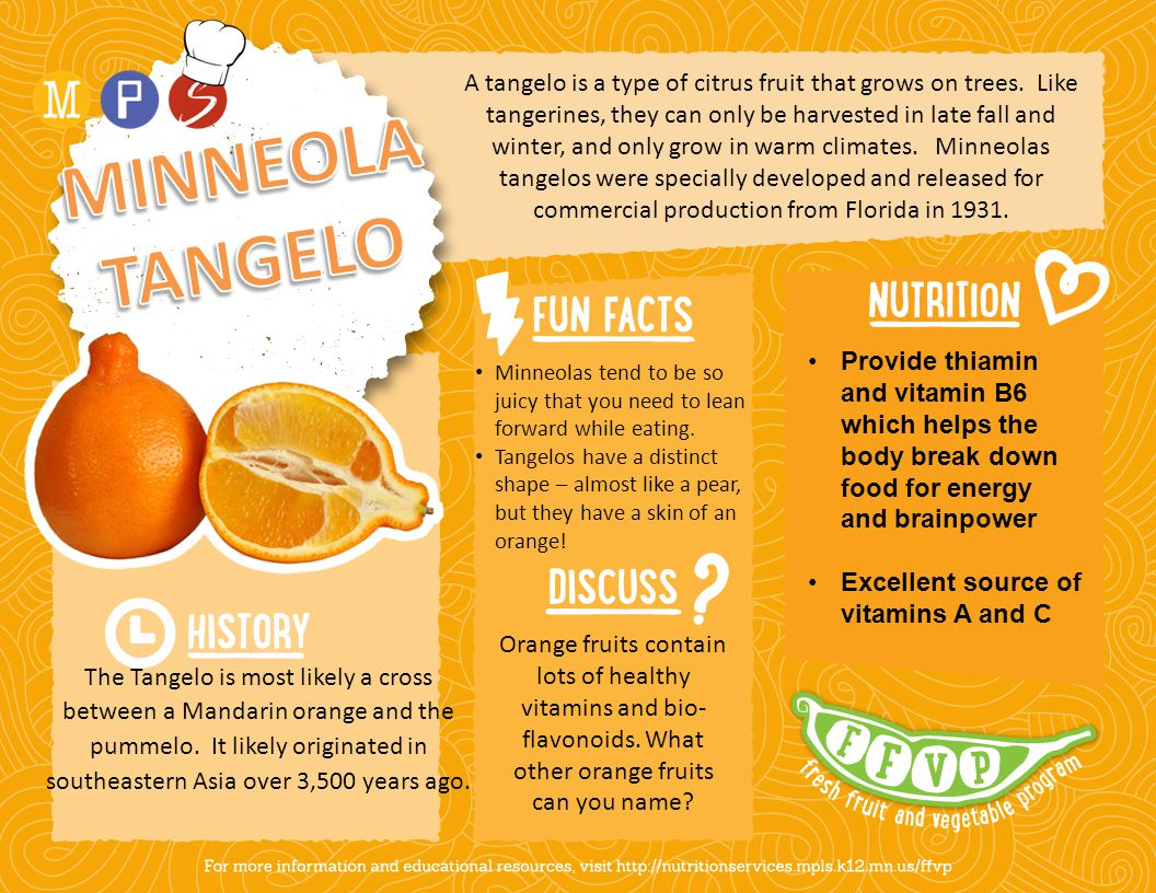 A tangelo is a type of citrus fruit that grows on trees. Like tangerines, they can only be harvested in late fall and winter, and only grow in warm cl