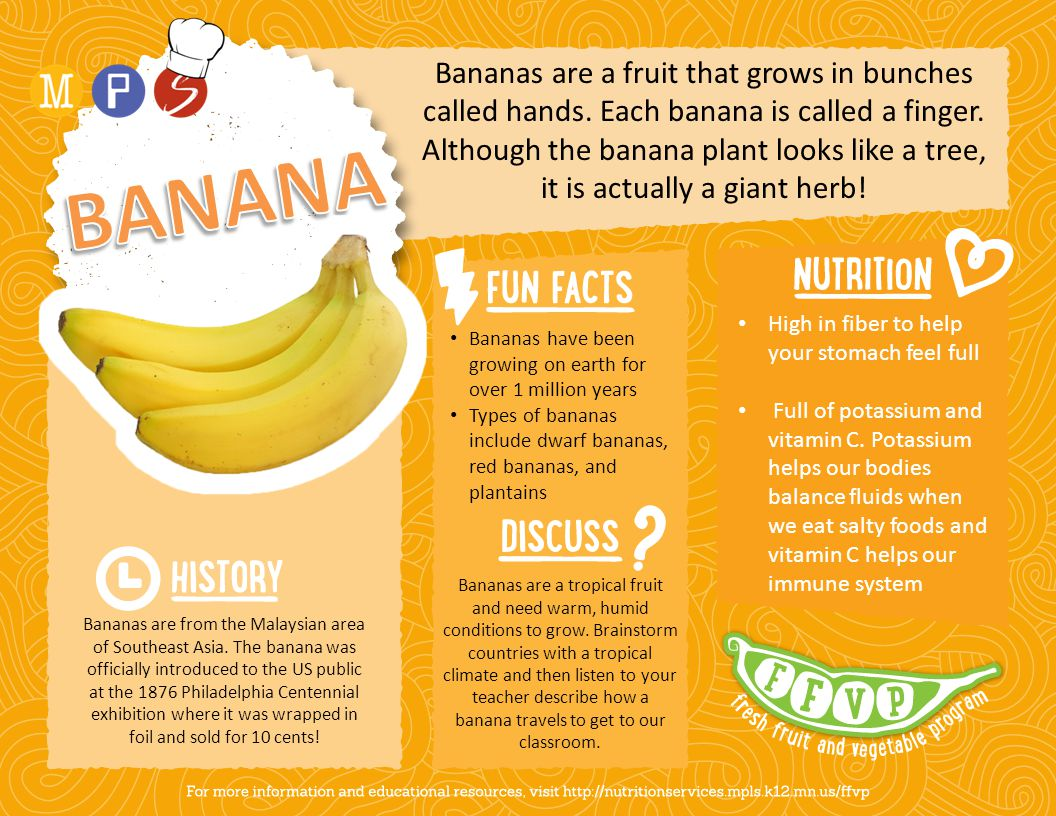 Bananas are a fruit that grows in bunches called hands. Each banana is called a finger. Although the banana plant looks like a tree, it is actually a