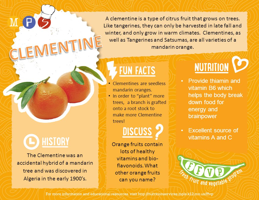 A clementine is a type of citrus fruit that grows on trees.