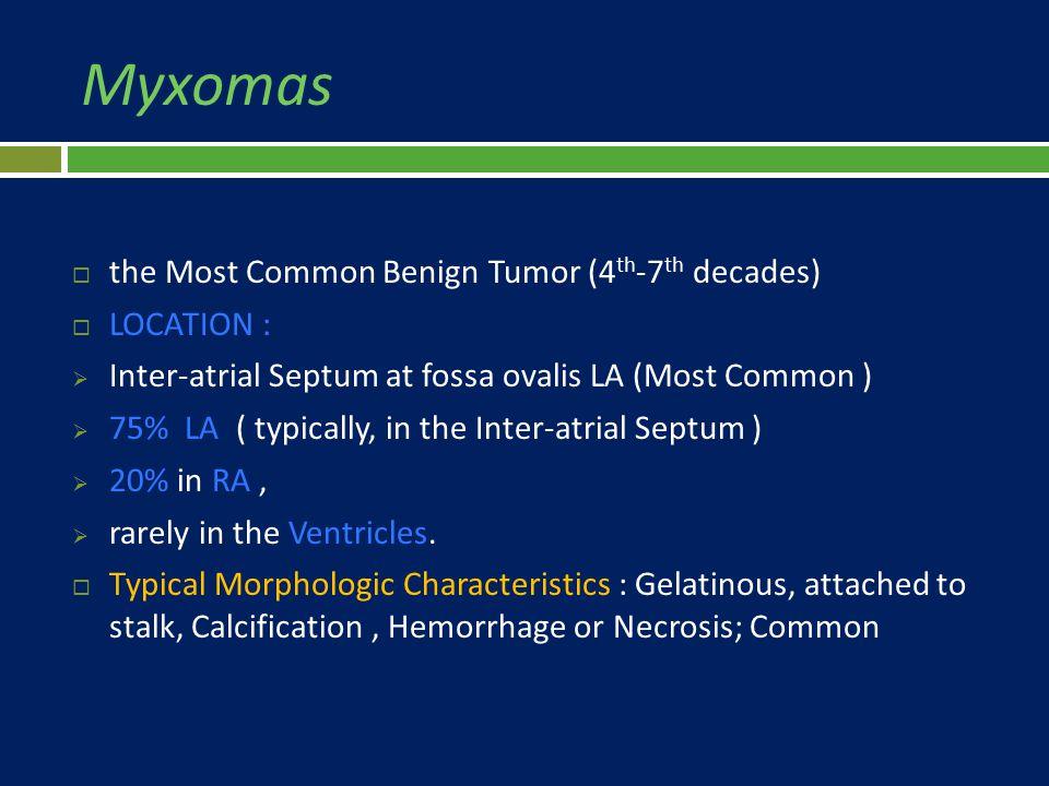 Myxomas  the Most Common Benign Tumor (4 th -7 th decades)  LOCATION :  Inter-atrial Septum at fossa ovalis LA (Most Common )  75% LA ( typically,