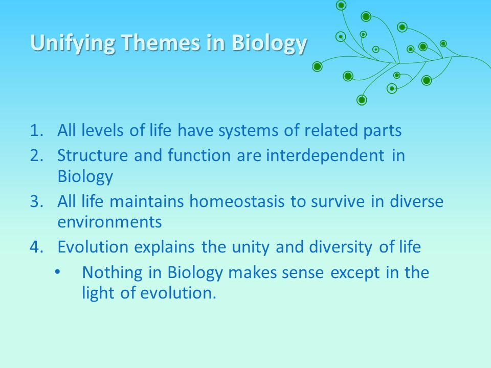 Unifying Themes in Biology 1.All levels of life have systems of related parts 2.Structure and function are interdependent in Biology 3.All life mainta