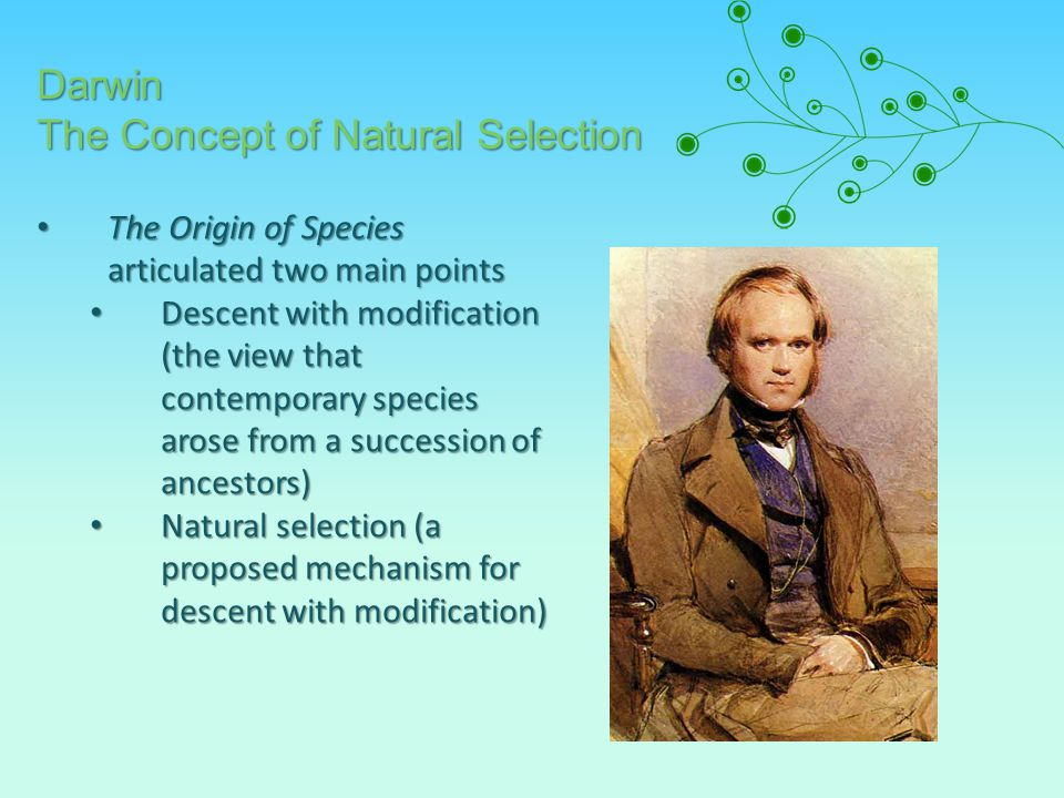 The Origin of Species articulated two main points The Origin of Species articulated two main points Descent with modification (the view that contemporary species arose from a succession of ancestors) Descent with modification (the view that contemporary species arose from a succession of ancestors) Natural selection (a proposed mechanism for descent with modification) Natural selection (a proposed mechanism for descent with modification) Darwin The Concept of Natural Selection