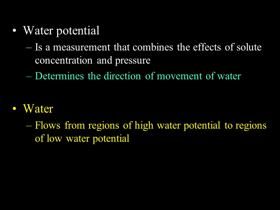 Water potential –Is a measurement that combines the effects of solute concentration and pressure –Determines the direction of movement of water Water –Flows from regions of high water potential to regions of low water potential