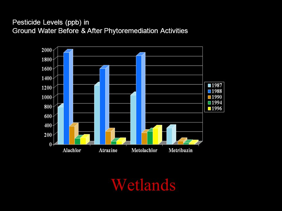Pesticide Levels (ppb) in Ground Water Before & After Phytoremediation Activities Wetlands