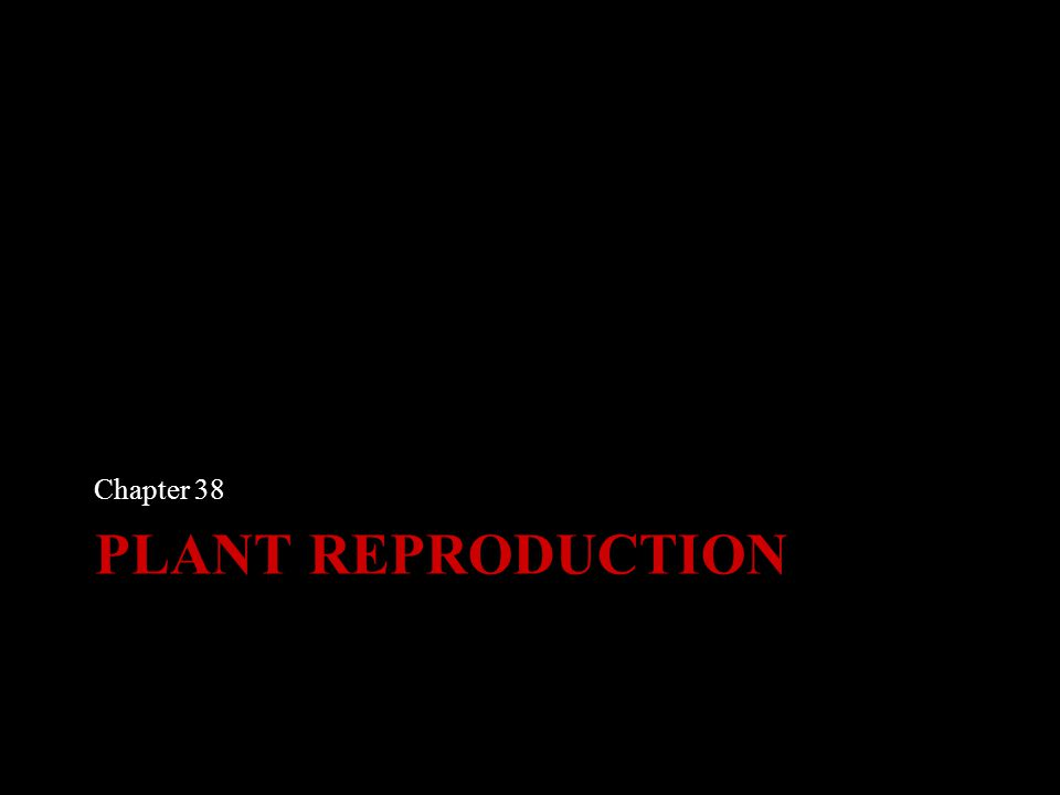 PLANT REPRODUCTION Chapter 38