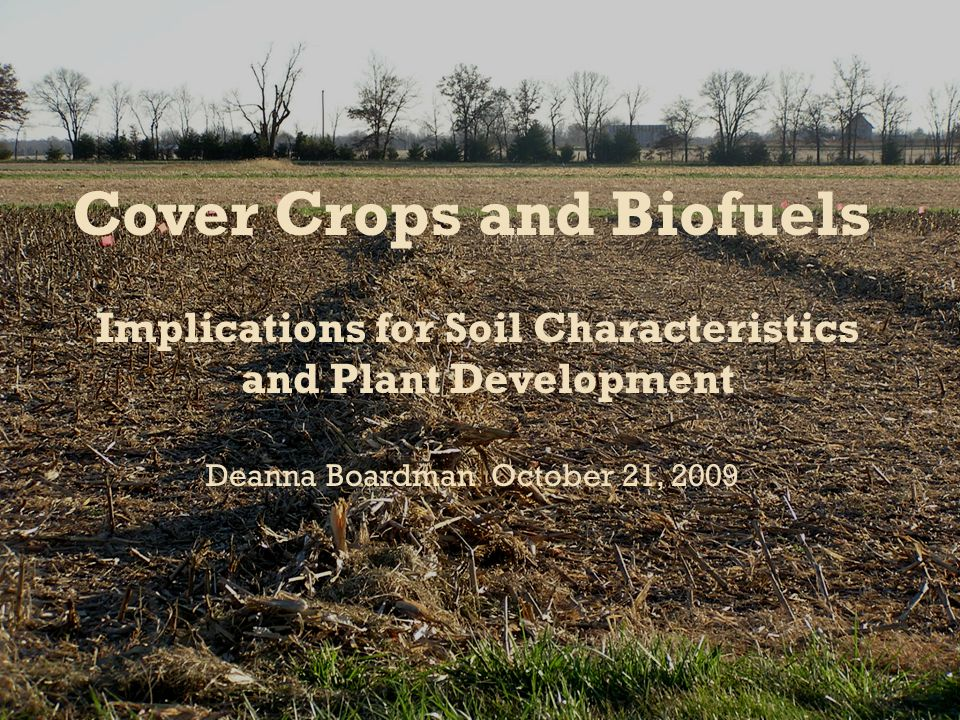  Introduction  Overview of residue removal for biofuels  Effect on Soil Characteristics  Effect on plant development  What cover crops can add to an agricultural system with residue removed  Conclusion