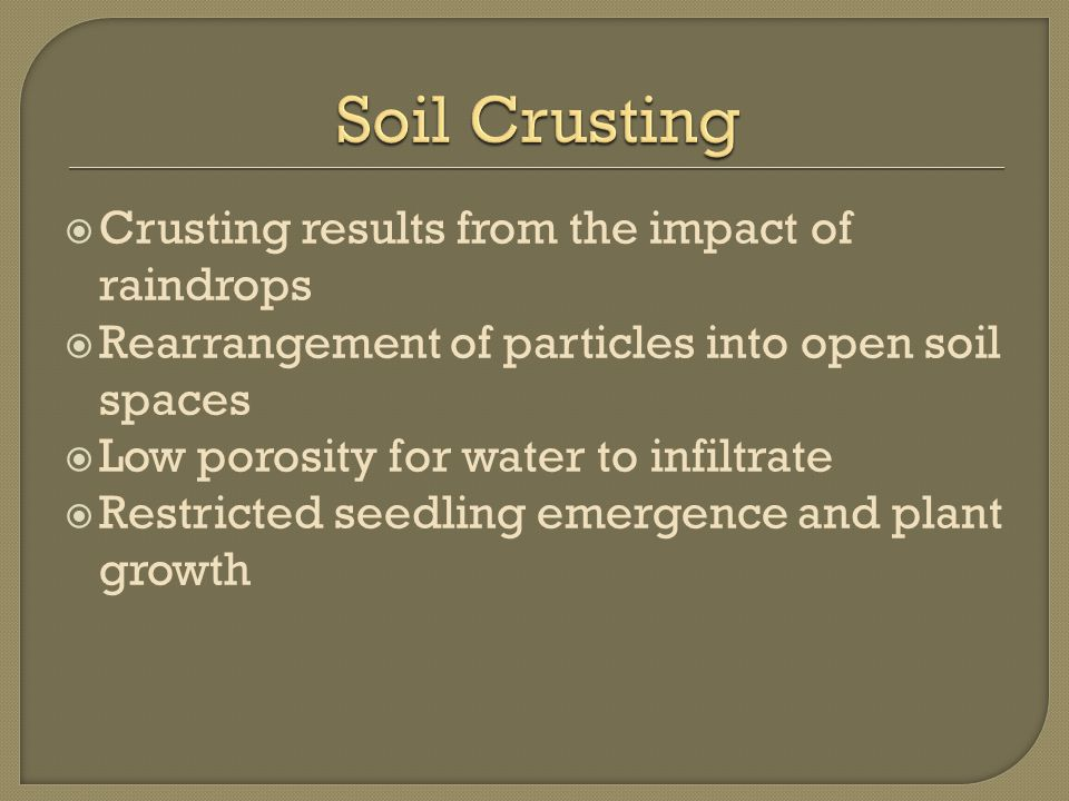  Crusting results from the impact of raindrops  Rearrangement of particles into open soil spaces  Low porosity for water to infiltrate  Restricted seedling emergence and plant growth