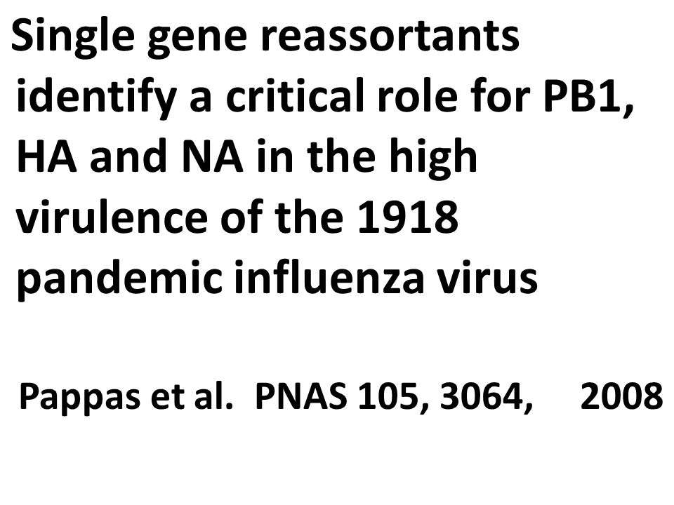 Single gene reassortants identify a critical role for PB1, HA and NA in the high virulence of the 1918 pandemic influenza virus Pappas et al.
