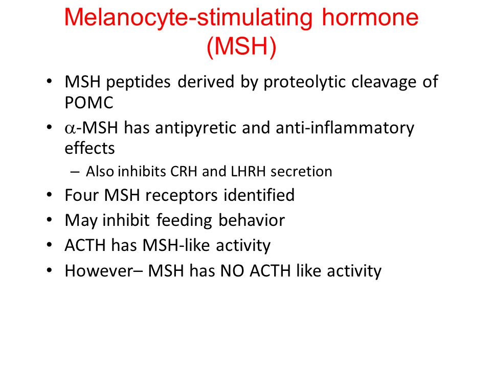 Melanocyte-stimulating hormone (MSH) MSH peptides derived by proteolytic cleavage of POMC  -MSH has antipyretic and anti-inflammatory effects – Also