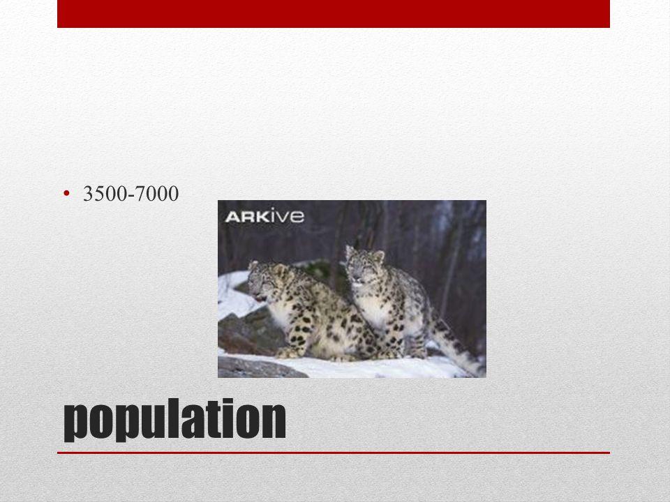 population 3500-7000